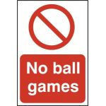 No Ball Games - PYC (200 x 300mm)
