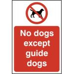 No dogs except guide dogs - RPVC (200 x 300mm)