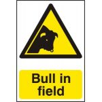 Bull in field - Corex (200 x 300mm)