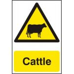 Cattle - Corex (200 x 300mm)